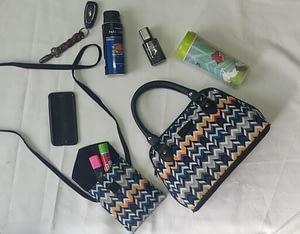 handbags for women (2)