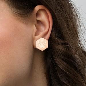 Sterling Silver Hexagon Stud Earrings.